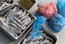 إغلاق 210 محلات غذائية على مستوى مكة المكرمة