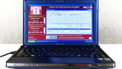 بيع كمبيوتر يحتوي على 6 من أخطر الفيروسات